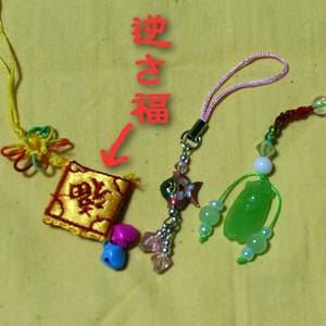 S_sakasafuku