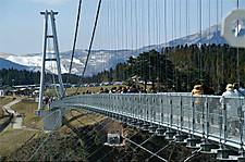 S_tsurihashi1