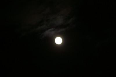 Moon_chushu