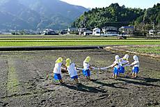 Kakashimaturi1211184