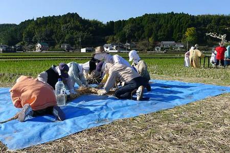 Shimenawa1211182