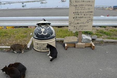 Tashirojima12031833