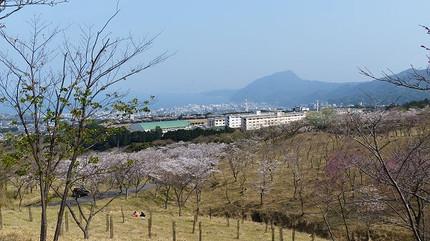 Ougiyama130330a