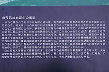 Info_yufuinbonchi