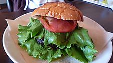 Hamburger1009